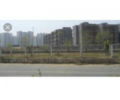1bhk flat in noida at best prices