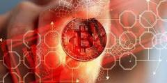 Bitcoinmoney  Appealing and Interactive Dashboard of Bitcoin Money stage