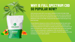 Make Your Life Easiest With Medi Greens CBD Gummies