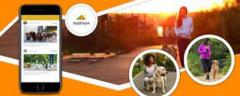 Attract The Pet Lovers With A Well-customized Uber For Dog Walker App