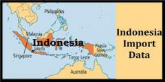 Check The Indonesia Import Data