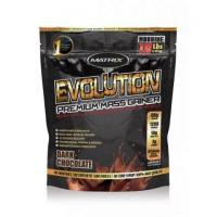 Rejuvenate your physique with our effective premium mass gainer