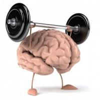 SF180 Brain:Support the new healthy brain cells