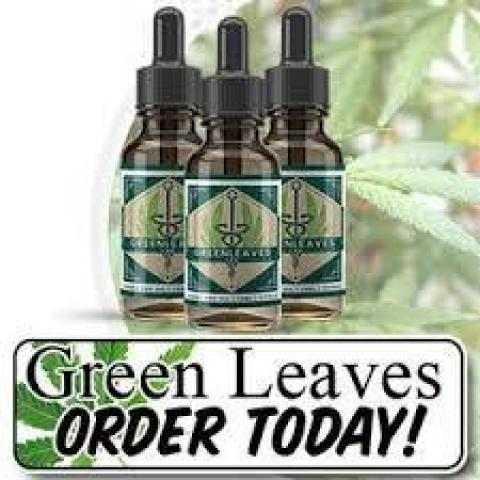 How does Green Leaves CBD Oil Work For You?