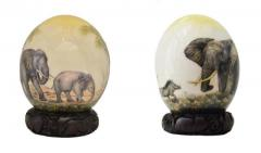 Painted Ostrich Eggs at Affordable Cost