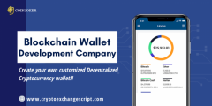 Blockchain Wallet Development Company