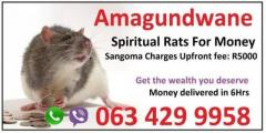 Spiritual rats or amagundwane money spells in usa