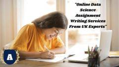 Online Data Science Assignment Writing Services