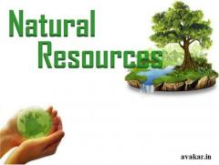 Save Environment With Us | avakar