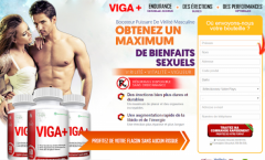 Answered: Your Most Burning Questions About Viga Plus France