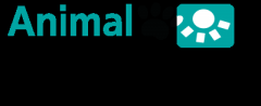 Cloud Based Veterinary Software Australia
