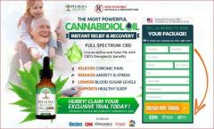 Characteristic Pharma Bloom CBD Oil Side Effects