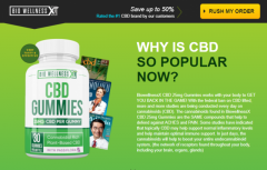 7 Things You Should Know About Bio Wellness CBD Gummies.