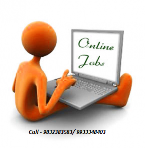 Video ad work and Online Data entry work,