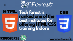 HTML CSS training Indore