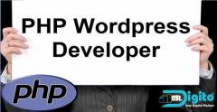 PHP & Wordpress Developer