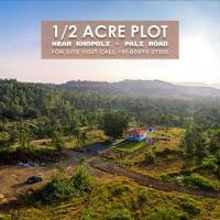 A Perfect Organic Farm for An Exciting Weekend Gateway