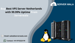 Buy Best VPS Server Netherlands with 99.99% Uptime From Serverwala