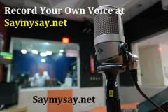 Say My Say The platform for singers and artists a like.